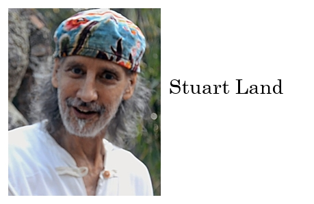 stuart-land-author